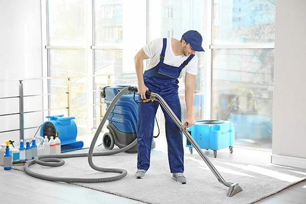 carpet cleaning islington